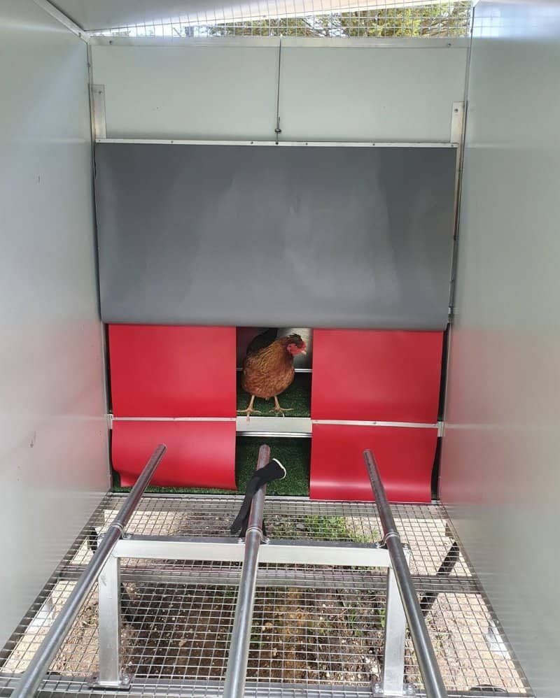 Client Testimonial Image of Moveable Chook Shed