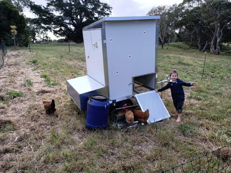 Testimonial images from Alison and Don for a 15 bird chook shed