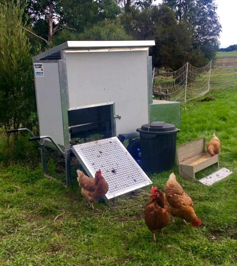 8 Bird Moveable Chook Shed Victoria