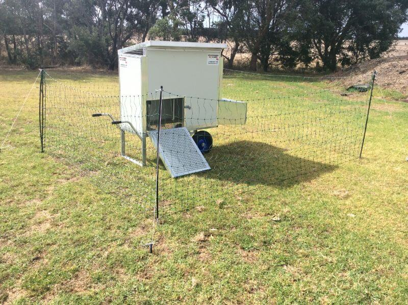 Small 8 Bird Portable Chook Shed