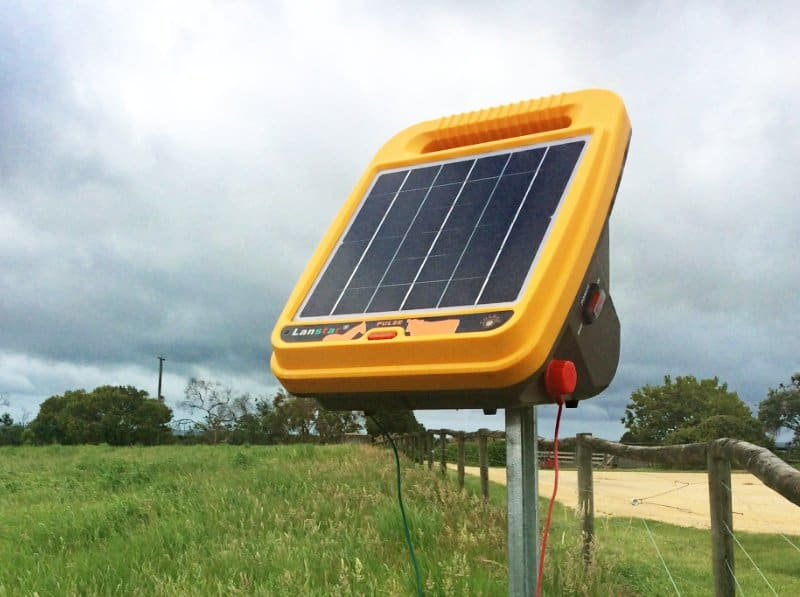 Solar energizer for electric fence netting - Edd's Moveable Chook Sheds